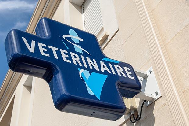 Caducee du Cabinet Vétérinaire Prieuré Carré